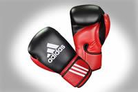 Championnats de la Caraïbe de Boxe Amateurs
