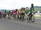 champ Martinique 2016_présentation