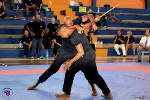 Championnat krav maga 2017
